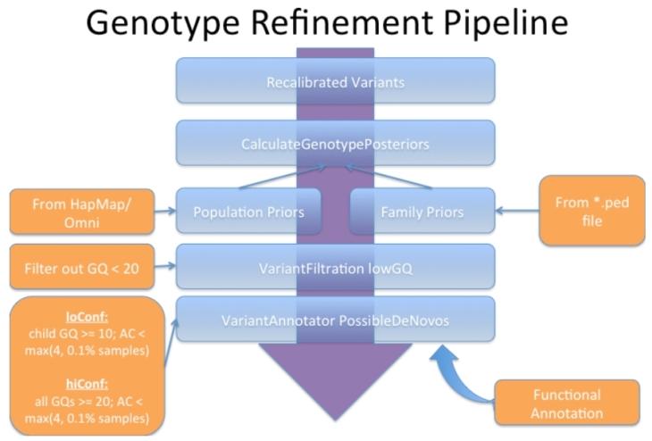 Genotype refinement
