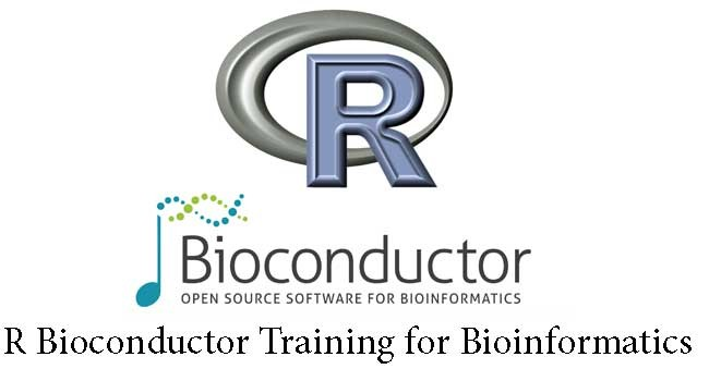 r-bioconductor-training_1