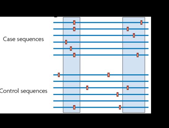 gene aggregation