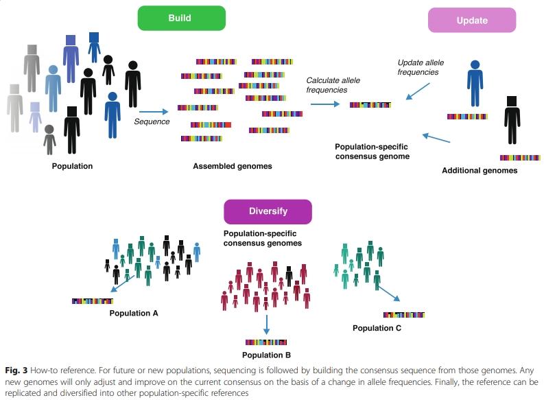 consensus genome_00000