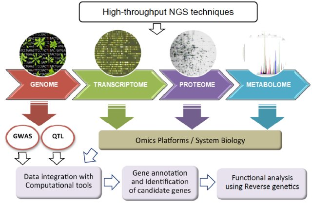 Fig-1-Data-integration-from-multiple-Omics-platforms-genomics-transcriptomics_W640